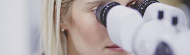 Licence Professionnelle d'Optique
